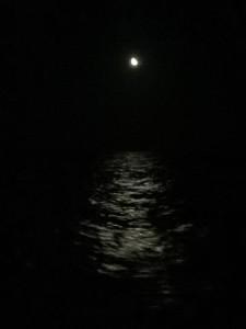 シクラード夜